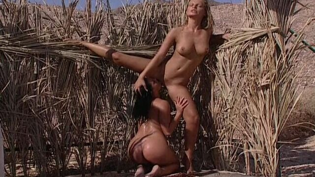 Секс по обмену / Desert Camp Sex Exchange (2001) на русском